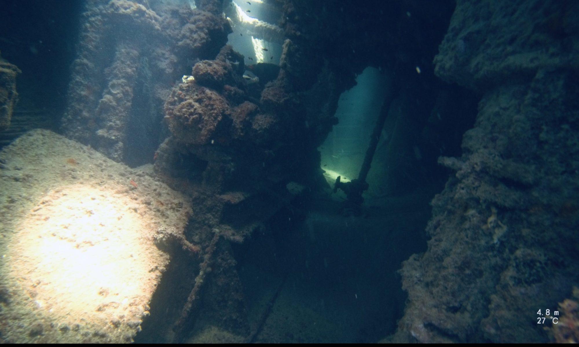 XENOSUN Diving